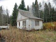 Продается участок в СНТ рядом с г.Пушкино - Фото 1