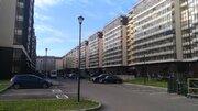 Сдается Студия в Красносельском районе, Проспект Ветеранов,171к5 - Фото 1