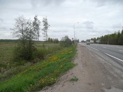 Участок 562 сотки в Тосненском районе - Фото 4