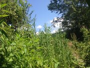 Земельный участок в Сочи с видом на море - Фото 2