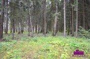 Продается зем.участок 102 сотки, окп «Зори», Новорижское шоссе - Фото 4
