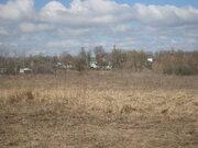 Продам земельный участок в селе Панино, недорого - Фото 4