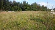 Участок 11 соток в сосновой лесу на берегу реки в Чеховском р-не - Фото 1