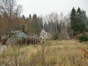 Продается участок в СНТ рядом с г.Пушкино - Фото 5