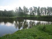 Продаётся участок 30 соток ЛПХ в д. Семёновское (г. Пущино 5км.) - Фото 3