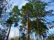 Продается участок в стародачном поселке Загорянский - Фото 1