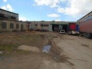 Сдается холодный склад площадью 504 кв, Аренда склада в Некрасовском, ID объекта - 900214636 - Фото 51