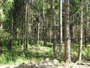 Минское ш. 34 км от МКАД, Сивково, Участок 10.15 сот. - Фото 3