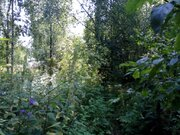 Д. Малахово 2 уч. 20 сот под ИЖС Заокского района - Фото 3