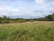 Земельный участок лпх, Батецкий район, деревня Мокрицы - Фото 4