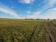 Участок 60 сот ЛПХ в селе Симоново, Заокского р-н - Фото 2