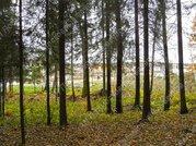 Ярославское ш. 20 км от МКАД, Нагорное, Участок 35 сот.