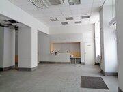 Торгово-офисное помещение 217,5 м2 в центре г. Кемерово - Фото 4