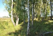 Продажа участка 73 сотки в кп «Солнечная Долина» (Долина имений) - Фото 3