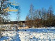 Продажа участка в деревне Барсуки у озера. - Фото 5