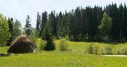 Участок в деревне 12 соток, МО, Можайский р-н, 105 км от МКАД. - Фото 4