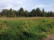 Земельный участок лпх, Батецкий район, деревня Мокрицы - Фото 5