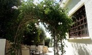 295 000 €, Очаровательная вилла с панорамным видом на море в пригороде Пафоса, Продажа домов и коттеджей Пафос, Кипр, ID объекта - 503929925 - Фото 16