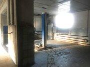 Продается помещение под производство или готовый бизнес, Готовый бизнес в Дмитрове, ID объекта - 100085176 - Фото 5