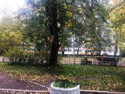 Продажа квартиры, м. Проспект Ветеранов, Кузнецова пр-кт. - Фото 4