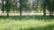 Продажа участка, Чемал, Чемальский район, Школьная - Фото 5