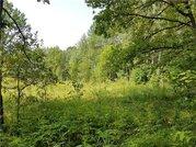 Продажа участка, Толбино, Брянский район, Лесной пер. - Фото 2