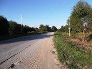 Продажа земельного участка 20 соток ИЖС рядом с Алёшней - Фото 4