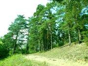 Судогодский р-он, Спас-Купалище с, земля на продажу - Фото 3