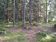 Продается участок 25 соток в поселке Медянка - Фото 2