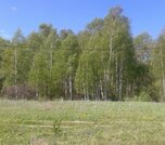 Продается земельный участок, Чехов г, Сенино д, Милягинская ул, 20 сот - Фото 4