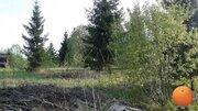 Продается участок, Новорижское шоссе, 65 км от МКАД - Фото 2