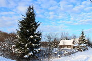 Халино д, участок 15 соток с домиком у леса - Фото 1