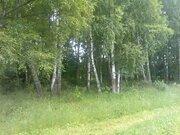 Продается 8 соток в д. Волосово, 5 км от г. Чехов, 55 км от МКАД - Фото 2