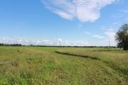 Участок в Псковской области на озере - Фото 5