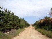 Участок в коттеджном поселке в Севастополе! 6 соток ИЖС. Сосновый лес! - Фото 2