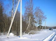 Лесной участок 5 гектаров в первозданной природе, река, лес, ИЖС - Фото 4