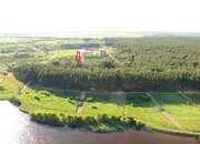 Участок с соснами рядом река Волга - Фото 2
