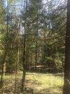 Лесной участок в посёлке премиум класса Ушаковские дачи, Купить земельный участок Леоново, Истринский район, ID объекта - 201408257 - Фото 6