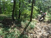 Продажа земельного участка в п. Краснокаменка 7 соток в леса. - Фото 4