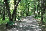Лесной участок на территории санатория, рядом река, экология, тишина. - Фото 4
