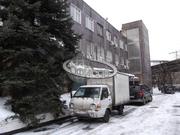 Офис, 197 кв.м.