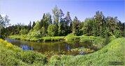 Лесной участок 45 соток рядом с рекой Искона, д. Пуршево.