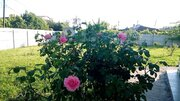 Абхазия. Гагра. 4-х этажный гостевой дом на 27 номеров. 1000 кв.м., Готовый бизнес Гагра, Абхазия, ID объекта - 100044073 - Фото 14