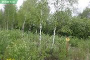 Продажа участка, Лаптево, Заокский район, Ул. Вязов - Фото 4