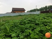 Продается участок, Рогачевское шоссе, 52 км от МКАД - Фото 3