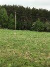 30 соток ЛПХ рядом с сосновым лесом - Фото 2