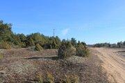 Участок рядом с сосновым лесом, Земельные участки в Гдовском районе, ID объекта - 201199227 - Фото 2