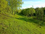 Земельный участок 5 га в 2 км от Калуги под базу отдыха - Фото 4