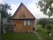 С. Остров, 1-но этажный деревянный дом общ. пл. 78 кв.м - Фото 3