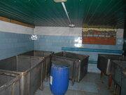 Мясоперерабатывающий цех на участке 20 сот - Фото 2